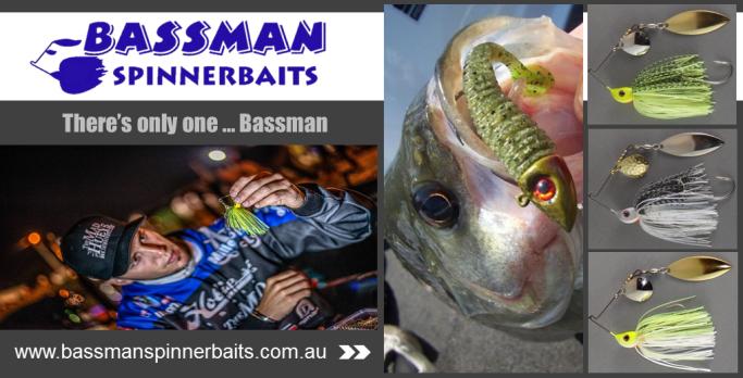 Bassman July Promo