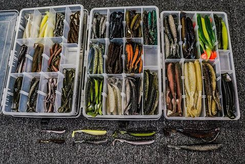 my-molix-ra-shad-collection